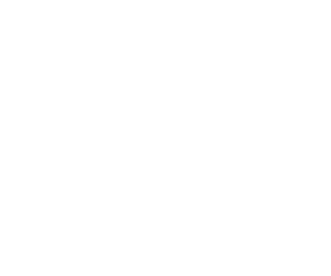 valve for the future